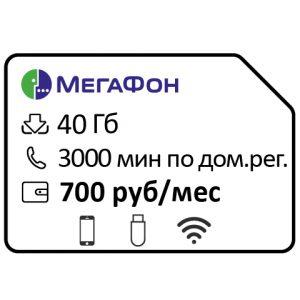 megafon federalnyj speczialnyj 700 3000min