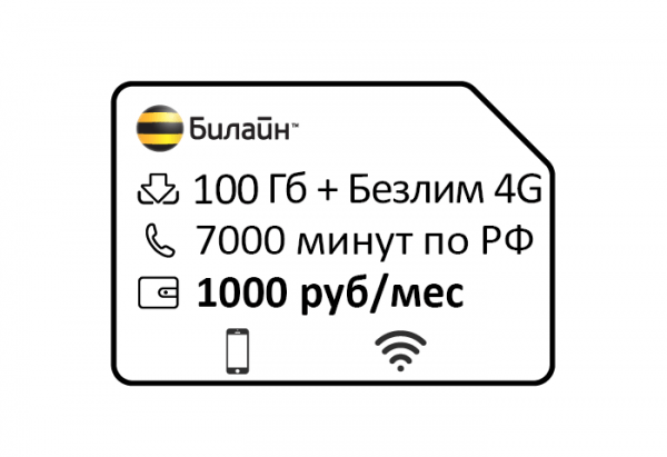 beeline —klyuchevoj 1000