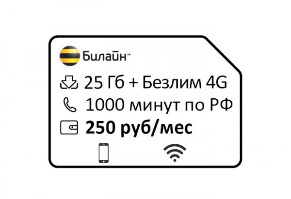 beeline —klyuchevoj 250
