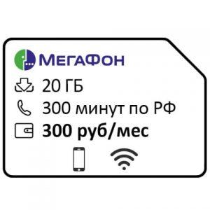 20300300
